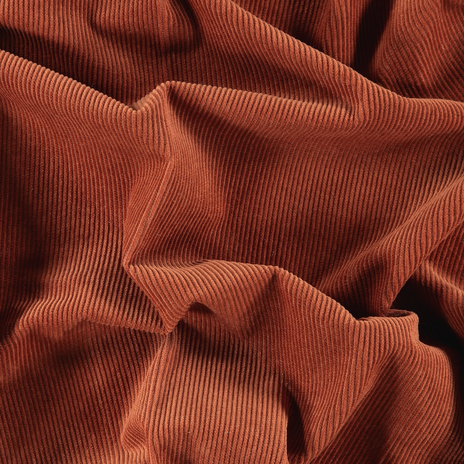 Corduroy 8 wales rouge
