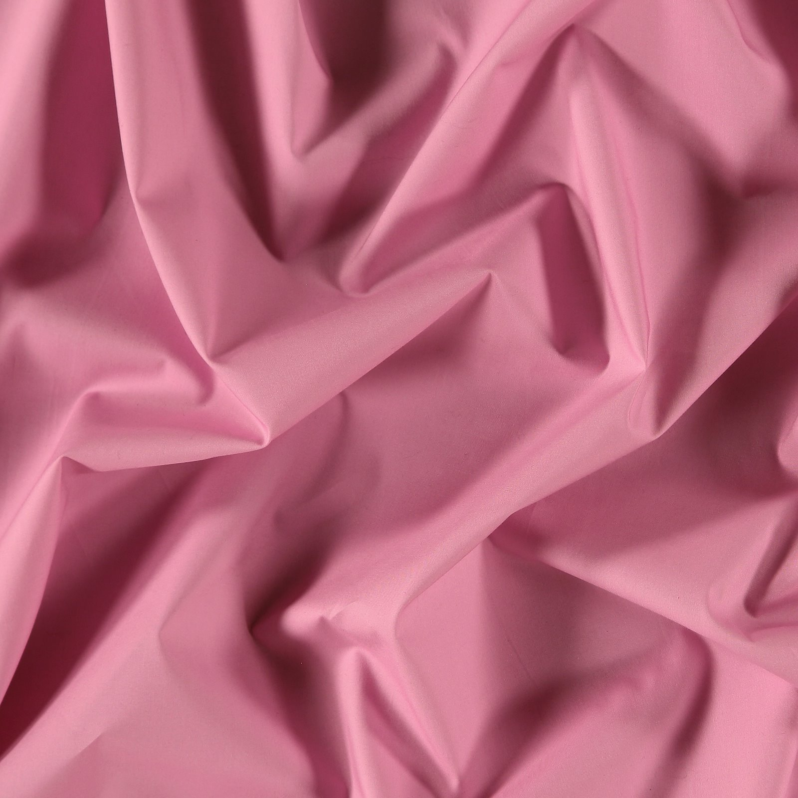 Baumwollpopeline, Hell Violett