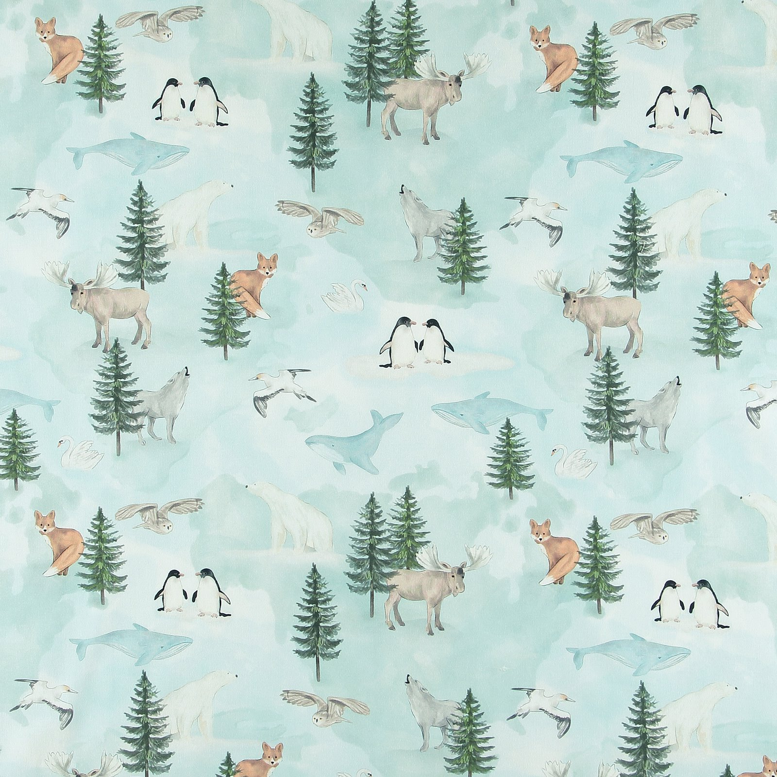 BCI cotton with northern animals 780597_pack_sp