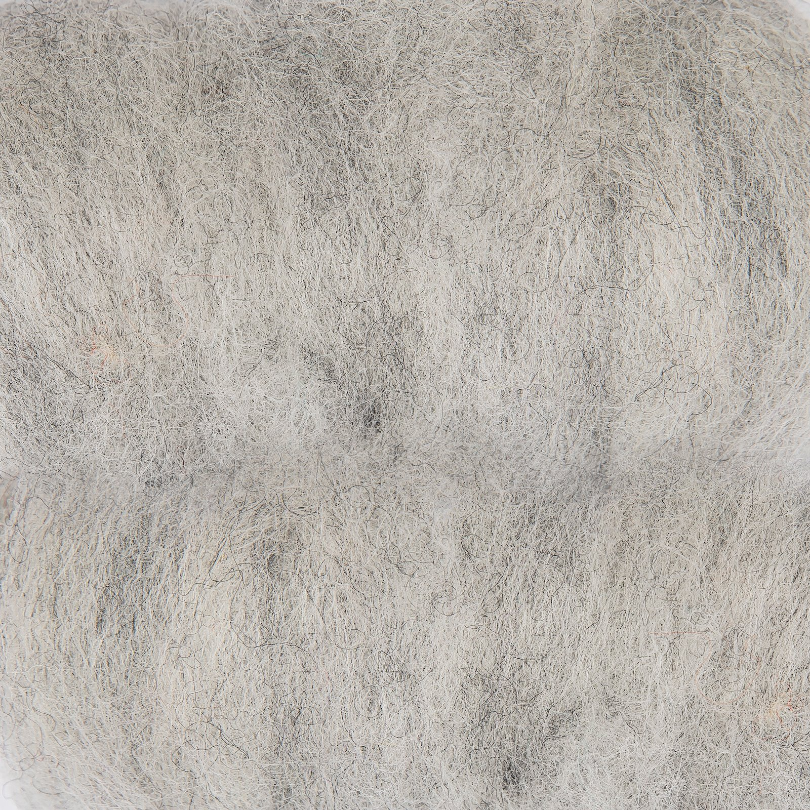 Carded wool grey 50g 90048042_pack