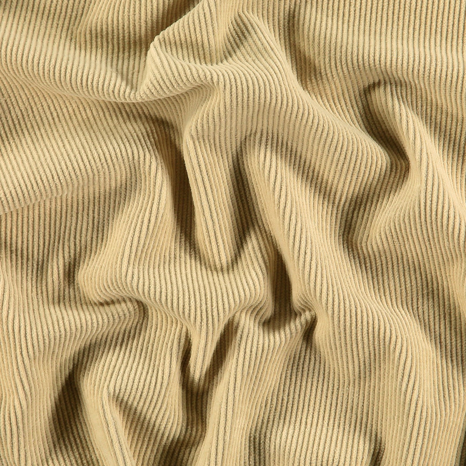 Corduroy 8 wales sand 430827_pack