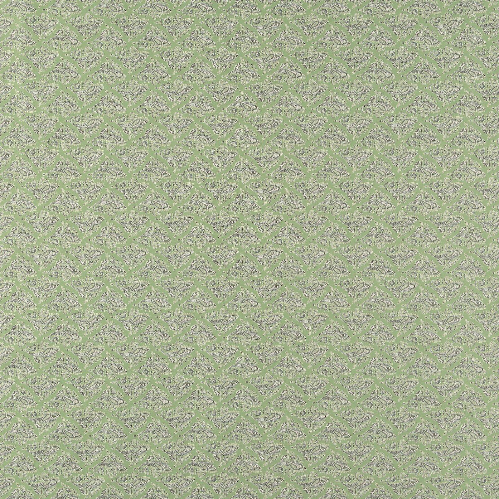 Cotton dusty sage w paisley pattern 852370_pack_sp