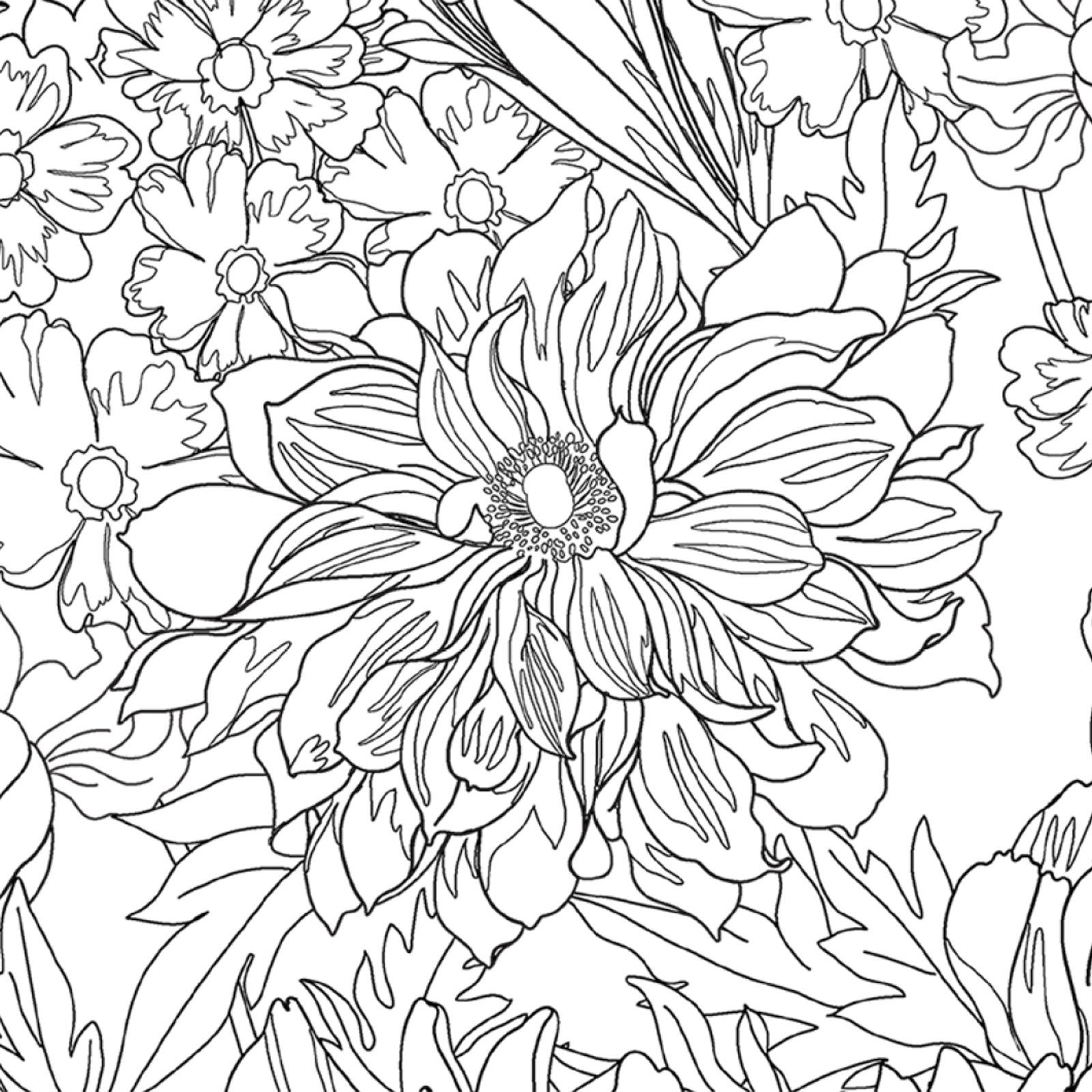 Drawings DIY1007__Drawings.jpg