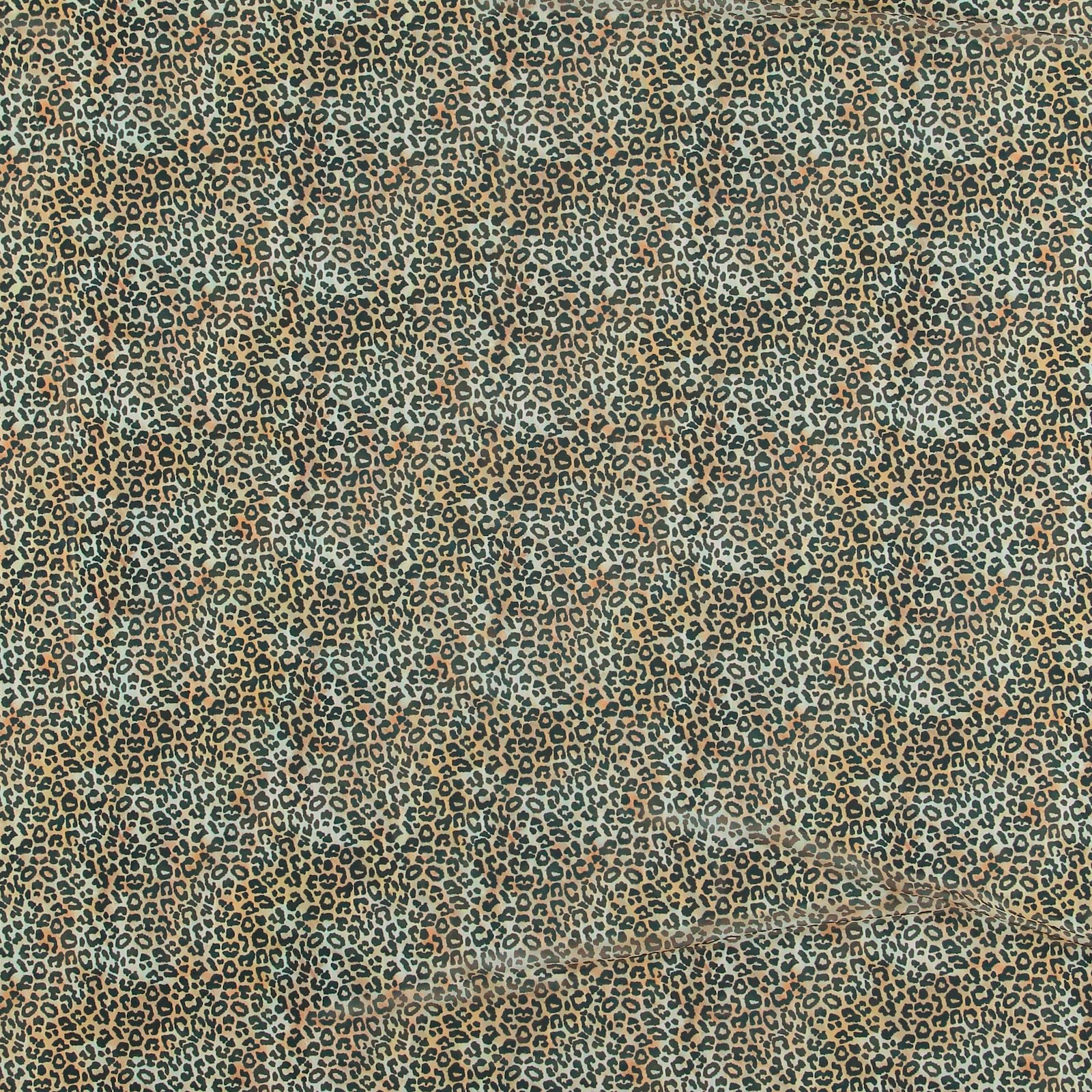 Mesh beige with animal print 640281_pack_sp