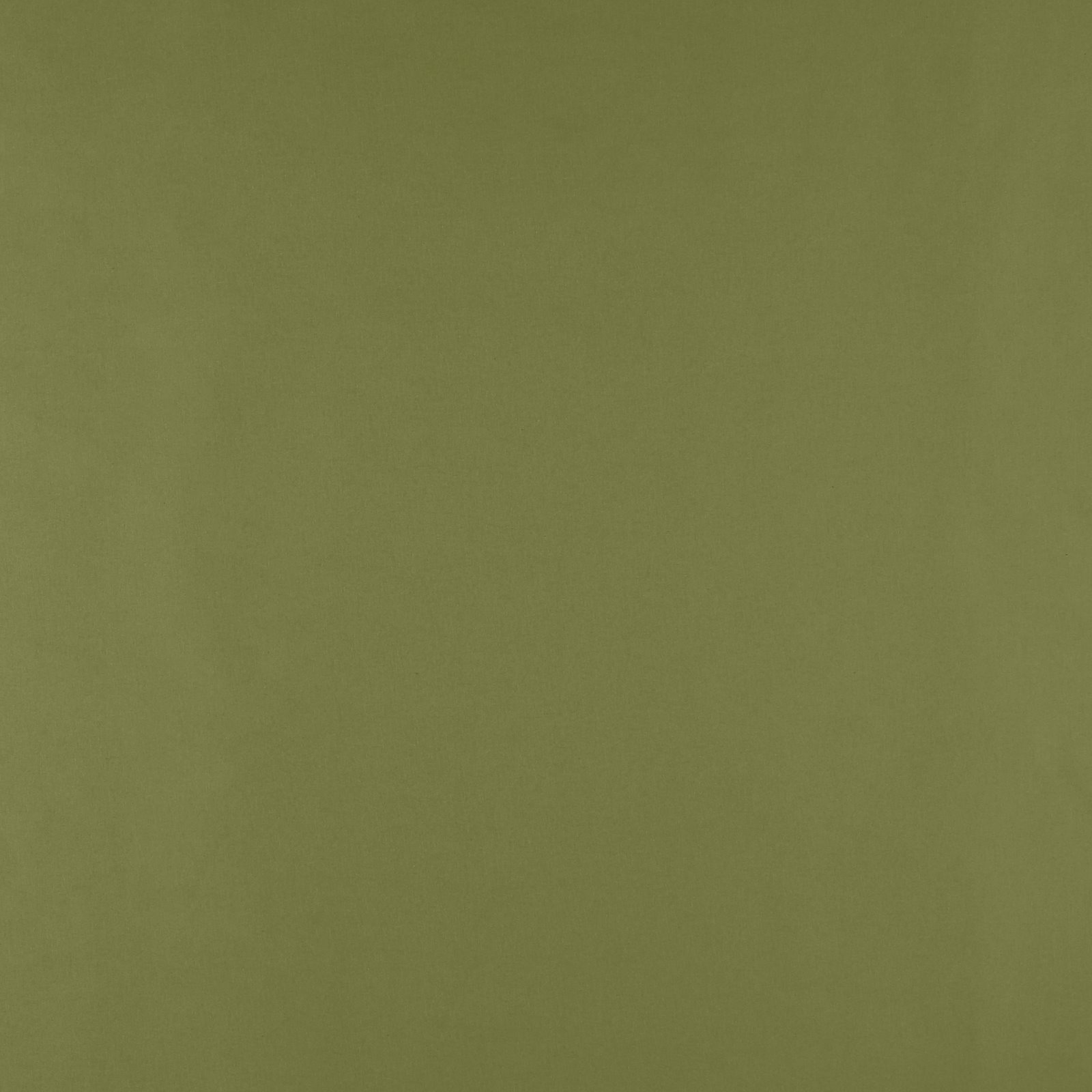 Organic cotton antique green 780515_pack_solid