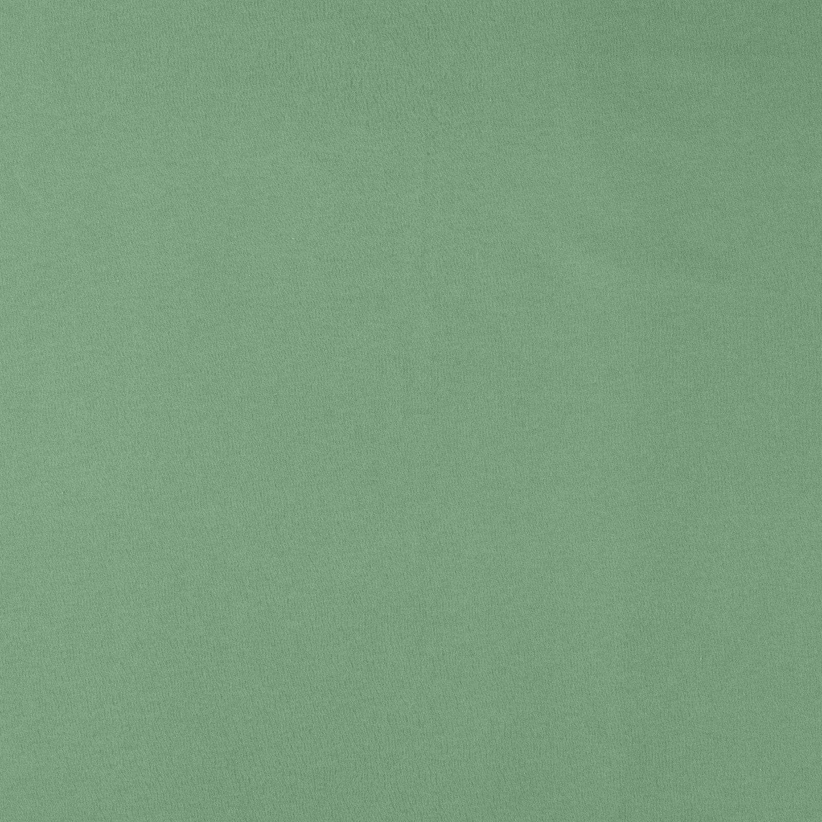 Organic french terry dusty green brushed 211757_pack_solid