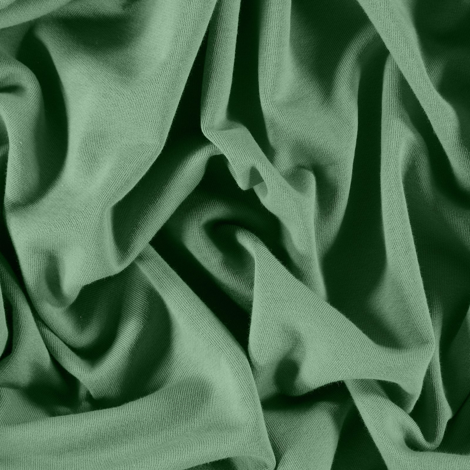 Organic french terry dusty green brushed 211757_pack