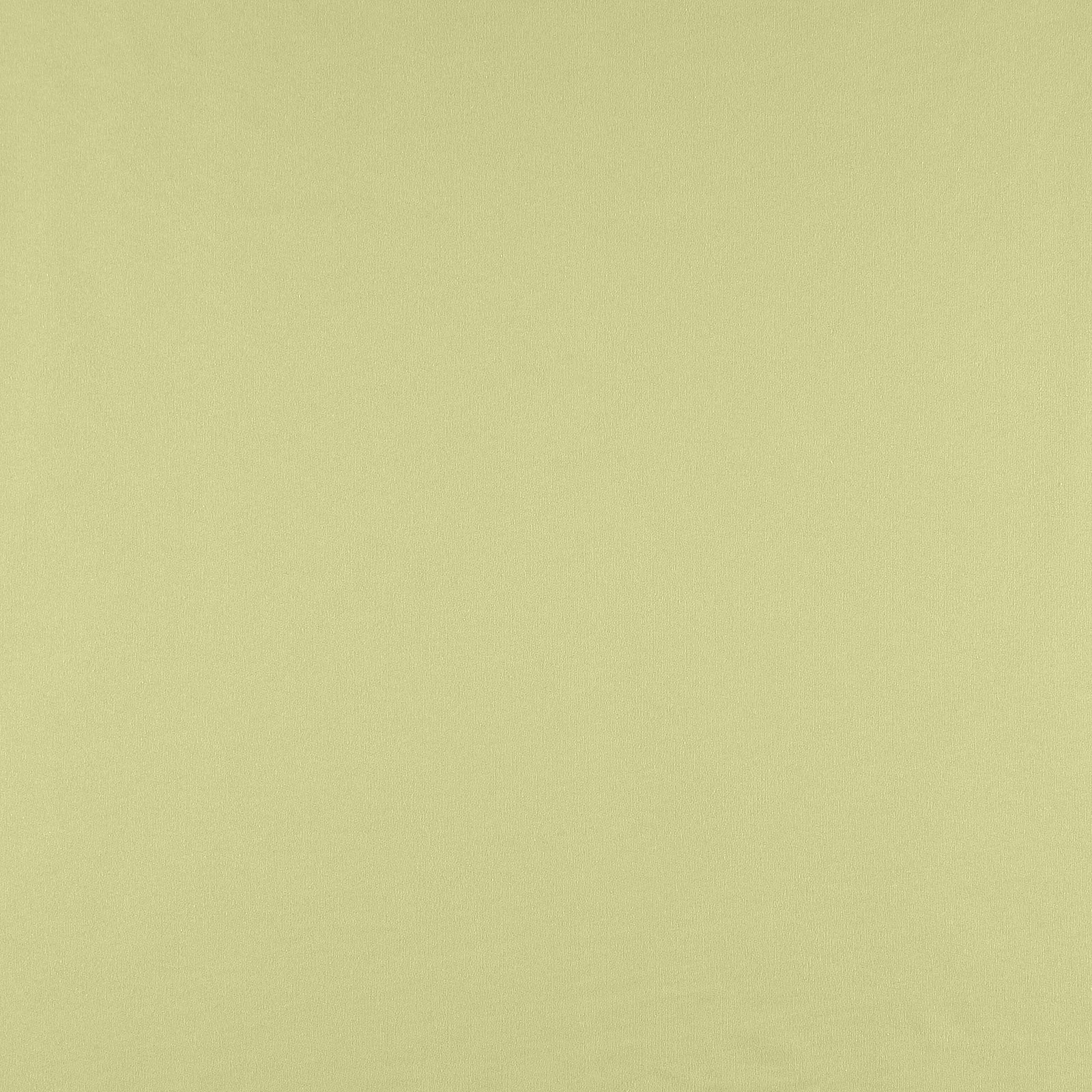 Organic french terry light sage brushed 211794_pack_solid