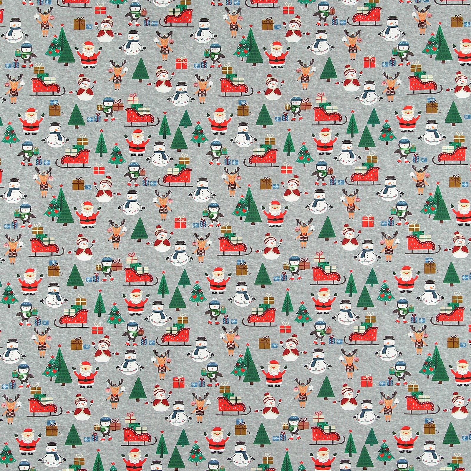 Organic Stretch Jersey m Weihnachtsmotiv 272338_pack_sp