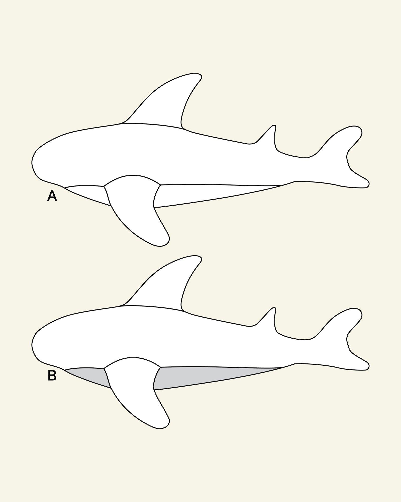 Shark floor cushion