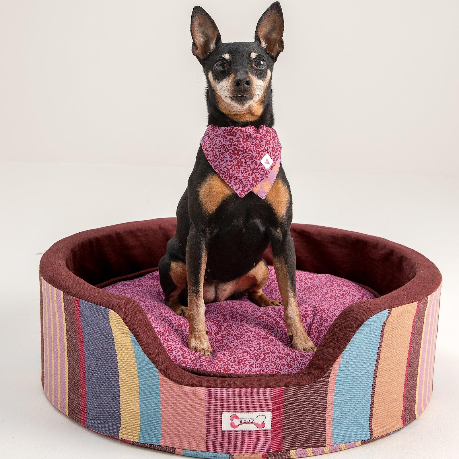 Patch kit dog nature/pink 3 pcs DIY9017_852413_852410_24848_p90348_780550_410144_852413_24848_bundle
