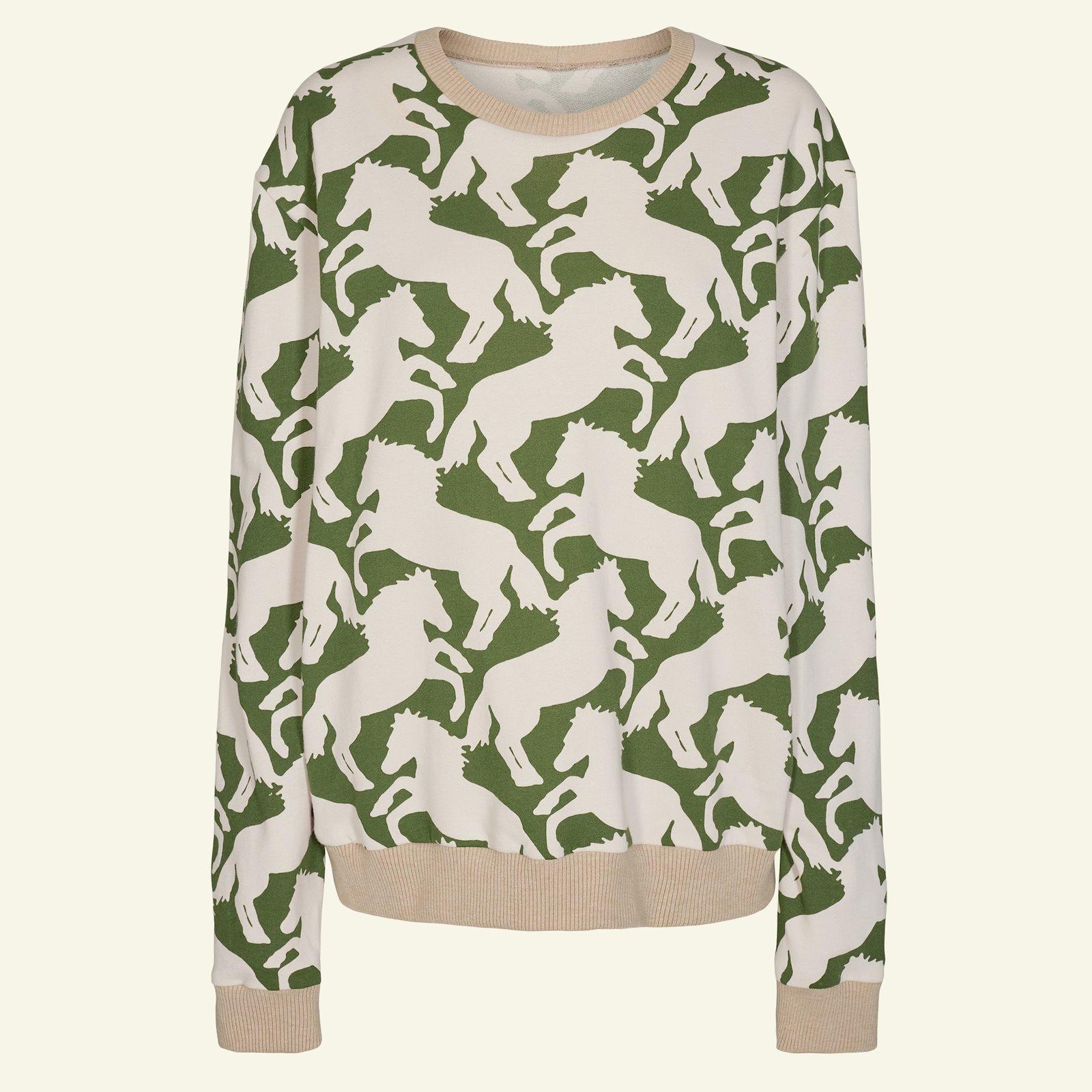Sweatshirts, S p87002_211788_96040_sskit