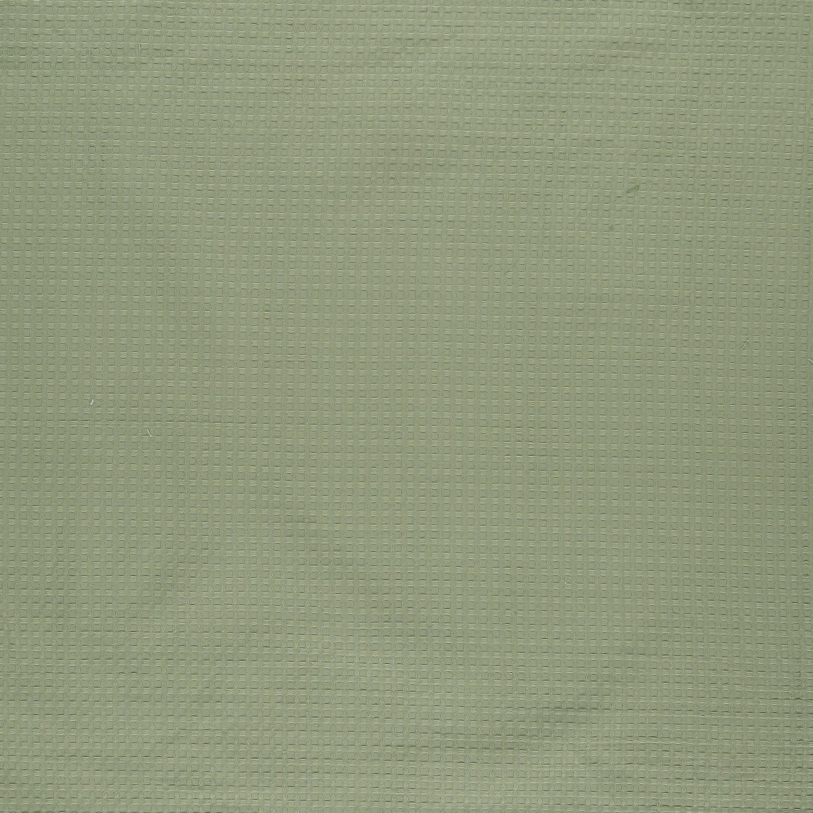 Woven jacquard light green w structure 501728_pack_solid